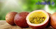 خواص پشن فروت ، خواص و مزه و طبع میوه پشن فروت برای پوست